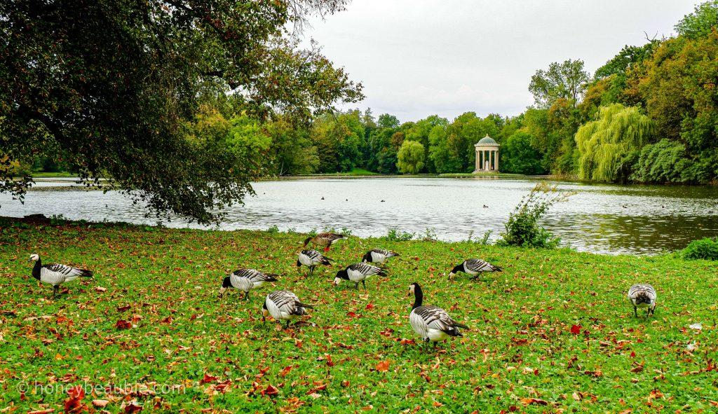 badenburg-lake